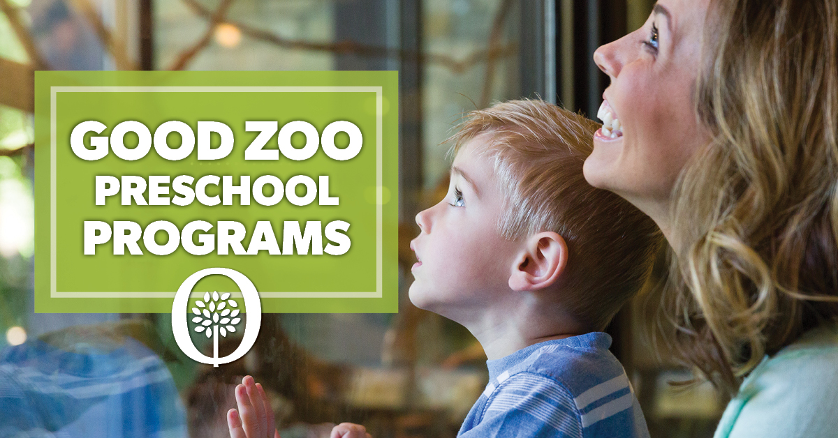Zoo Preschool Programs header photo