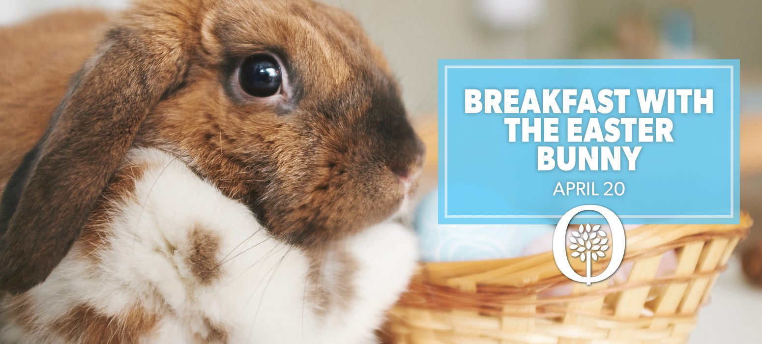 Breakfast with the Easter Bunny header photo