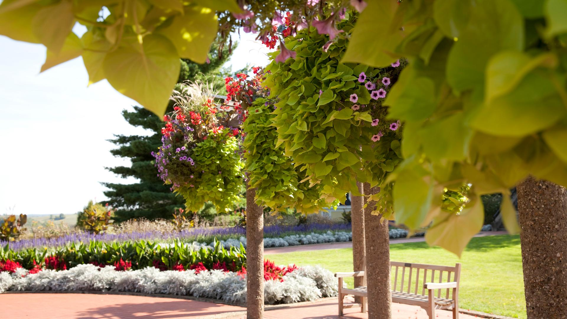 Bissonnette Gardens header photo